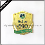 Значок металла высокого качества изготовленный на заказ для украшения (BYH-1011097)