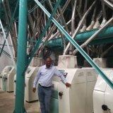 Le Kenya fonctionnant 24 tonnes de maïs de machine de minoterie