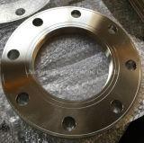 Edelstahl schmiedete Ring-Platten-Flansch (PY0076)