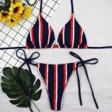 Traje de baño lleno del bikiní de la foto de las fotos de la muchacha abierta atractiva caliente encantadora de la playa