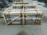O melhor granito preto de Shanxi com ponto dourado
