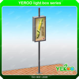 Для использования вне помещений дорожного знака лампа солнечной энергии на полюсе Lightbox