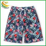 Cotone allentato di stirata di svago degli uomini di modo/Shorts di tela della scheda di usura della spiaggia