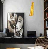Moderne klassische Hauptvorhalle-dekoratives hängendes Glaslicht (MD10930)