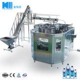 Het kant en klare Mineraalwater van de Lijn van de Installatie van het Project Automatische Huisdier Gebottelde/Zuiver Water/Drinkwater/Vloeibare het Vullen Bottelmachine