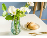 De Vaas van het Glas van het Platteland van de Decoratie van het tafelblad met Handvat
