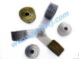 De Spijkers van het staal voor de Fabrikant van de Bouw in China