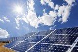 Panneau solaire 310W Poly avec plein de la certification de 30 ans de garantie