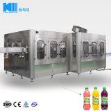 自動フルーツジュースペットびんの飲料の液体満ちるびん詰めにするパッキング機械