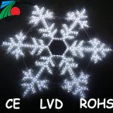 LEIDENE van het Venster van de Vakantie van Kerstmis van de Hangende 2D Licht van het Motief Sneeuwvlok van de Kabel het Lichte