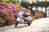 Scooter de mobilidade elétrica de duas rodas com preço de fábrica