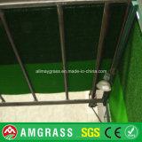 Grama artificial de futebol CE / SGS, campo sinuoso de campo de futebol