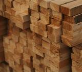 Diseño simple de chapa de madera puertas de madera maciza (SC-W008)