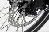 De elektrische Vouwende Rem van Bicyclev van de Fiets van de Stad met Shimano past Brushless Motor 20 '' Gr-Dn2003z aan