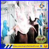Ligne de production Abattoir Équipement d'abattoir / Matériel de bétail Halal Ligne de processus d'abattoir