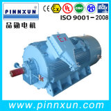 Alta tensão 6000V Explosionproof Motor