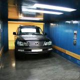 Elevatore dell'automobile della Cina FUJI Zy