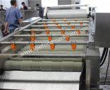 Taglio/taglio a cubetti e lavatrice automatici industriali della lattuga cappuccio