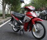 Juver Morcycle (KS110-8)