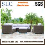 L'insieme esterno della serie del sofà del rattan, serie semi circolare del sofà del rattan ha impostato (SC-A7321)