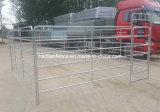 le bétail ovale de bétail de pipe de 40X80mm renferme le panneau dans un corral de yard de cheval