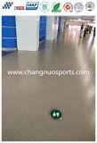 Schnell-Kräuselnder nahtloser Anti-Fallender Bodenbelag mit wirkungsvoller zum Schweigen bringender Funktion