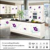 Modèle UV de cuisine de peinture de couleur de Zhihua (FY-6618)