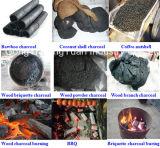 Fornace di carbonizzazione del carbone vegetale del BBQ di prezzi ragionevoli
