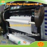 Têxteis Uso da impressora Garment Inkjet Plotter Paper