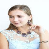 De nieuwe Halsband van de Juwelen van de Juwelen van het Punt Mooie Epoxy Vastgestelde