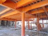 Taller de la estructura de acero del palmo grande (ZY401)