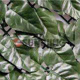 Plantas Jardim Buxo plástico IVY Hedge artificial da Barragem de lâminas