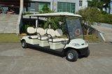 2016の新しいモデルの電気乗用車6のシート