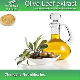 Выдержка листьев 100% естественная прованская (Oleuropein 6%~80%)
