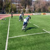 축구, 테니스, 운동장 및 정원사 노릇을 하기를 위한 인공적인 잔디 뗏장