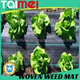 L'agriculture contre les mauvaises herbes PP tissés/tissu Non-Woven traitement UV