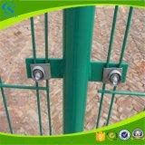 Agricoltura della barriera di sicurezza galvanizzata del ferro