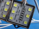 DV12V imprägniern 5050 6LEDs SMD LED Baugruppe für Kanal-Zeichen