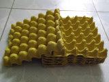 機械を中国製作る自動ペーパー卵の皿