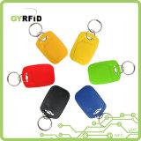 Em4100 Porte-clé clé sans contact pour les systèmes d'accès (KEA01)
