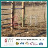Dehnbarer Bauernhof, der Draht-Metallviehbestand-Bereich-Bauernhof-Zaun-Gatter einzäunt