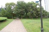Bridgelux LED 가벼운 LED 태양 문 빛 정원