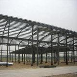 Het Pakhuis van het Frame van het staal met Plastic Dakraam