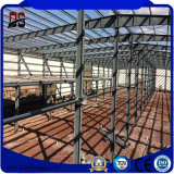 Acciaio chiaro prefabbricato facile della struttura dell'ampia luce dell'installazione