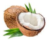 Saveur de menthe Luxsmile organiques de l'huile de noix de coco tirant sur le blanchiment des dents