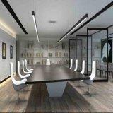Lado dobro de Dali Dimmable acima e para baixo luz linear para o quarto de reunião