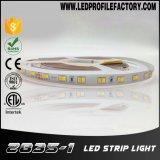 Bande en aluminium de la bande SMD5050 60LEDs DC12V DEL d'éclairage LED