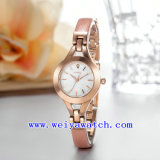 Relógio de senhoras de venda quente da promoção do relógio (WY-041D)
