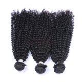 新しい方法ねじれた巻き毛のブラジルの毛の拡張