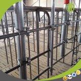 Großhandelsschwein-landwirtschaftliche Maschine-führender Systems-Kettenentwurf
